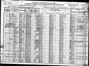 1920 Census Desoto County, FL