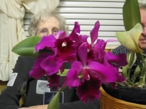 Ida Rose's amazing orchids