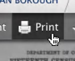 Viewer Print Button