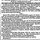 Advertisement for Sale of the Pimlico Plantation of General James Gadsden, Dec 1859