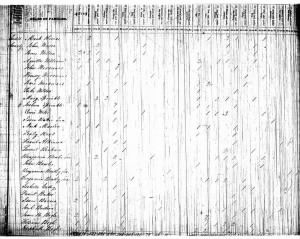 James H Bogle 1830 Census.jpg