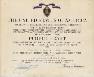 Hoag-Purple Heart-800.jpg